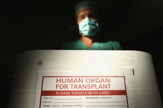 Работник трансплантационной организации Германии стоит перед пустым контейнером для транспортировки органов во время информационного мероприятия в клинике Вивантес-Нойкёльн в Берлине, 28 сентября 2012 г. Фото: SeanGallup/GettyImages