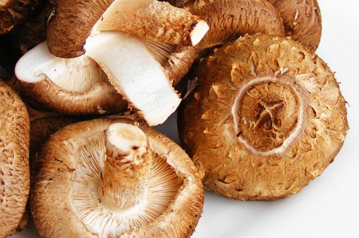 шиитаке, грибы, опухоль, лечение