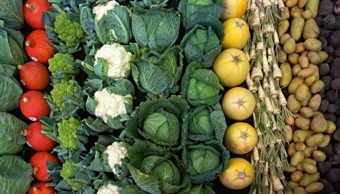 Хранение  овощей с собственного огорода