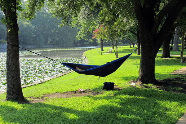Семь советов для отличного дневного сна