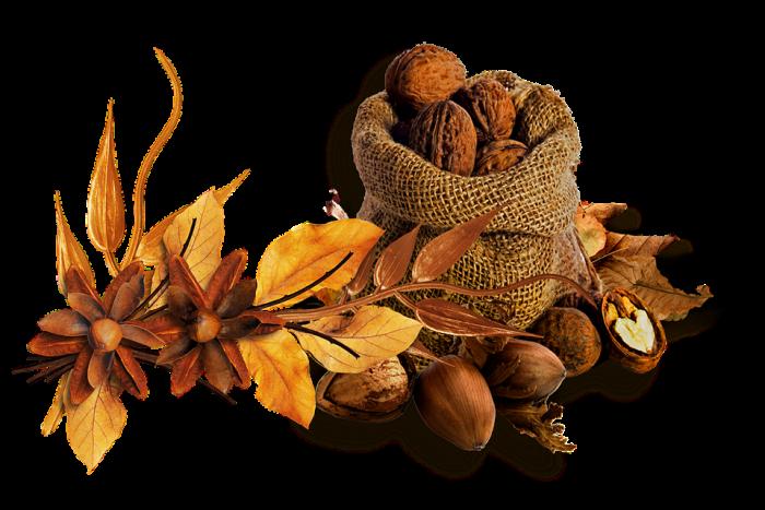 Осенне-зимние продукты для красоты вашей фигуры и хорошего настроения