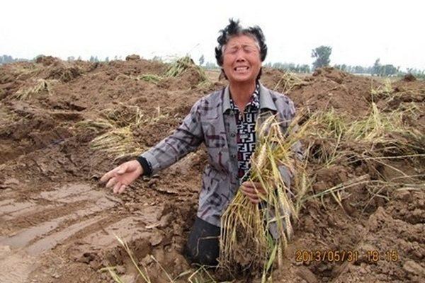 В Китае деградировало 40% пахотных земель