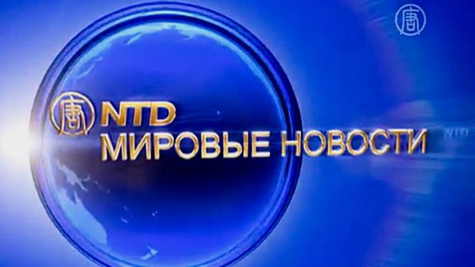 Еженедельный выпуск международных новостей с 7 по 11 ноября (видео)