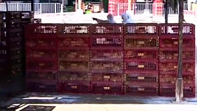 В январе этого года в Гонконге уже выявляли вирус H7N9 в импортированных из материкового Китая курах. Скриншот видео.