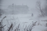 Метель на юге Сахалина, 17 декабря, 2014 год. Фото: sakhalin.info