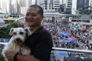 Турист с собакой фотографируется на пешеходном мосту с видом на главное место протестов в Адмиралтейском районе Гонконга 11 октября 2014 года. Фото: Anthony Wallace/AFP/Getty Images