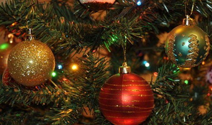 В Москве новогодние ёлки продают в горшках