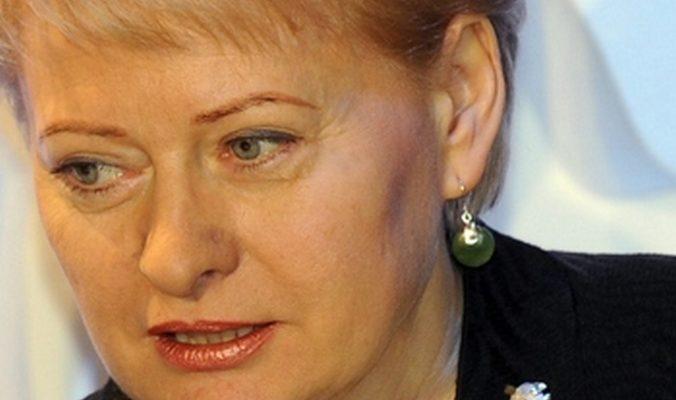 Президент Литвы: «Газпром» всё реже смогут использовать как средство политического давления
