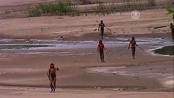 Индейцы из амазонских джунглей вынудили жителей двух деревень эвакуироваться в город (видео)