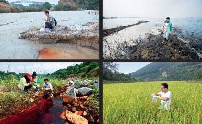 Загрязнение почвы в Китае: содержание мышьяка в 700 раз превышает норму