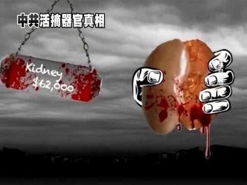 Власти Китая создали сомнительную организацию по распределению человеческих органов