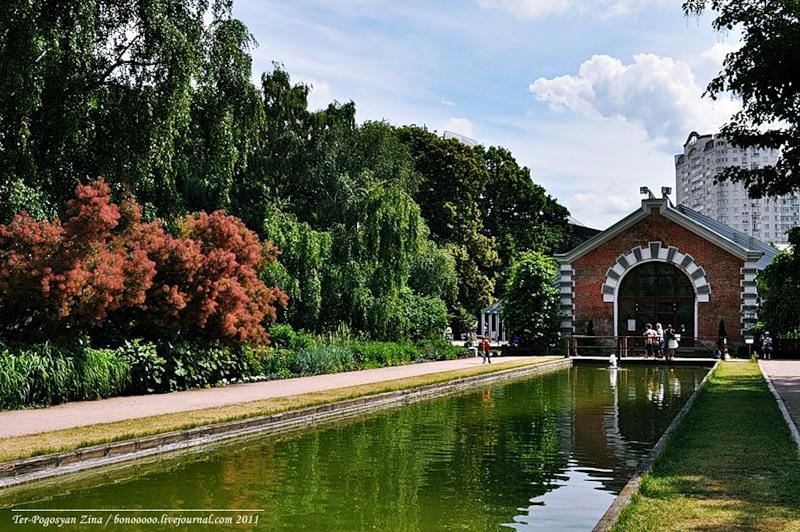 Ботанический сад МГУ, «Аптекарский огород». Фото: liveinternet.ru