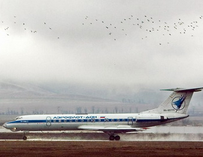 Фото: RUSLAN ALKHANOV/AFP/Getty Images