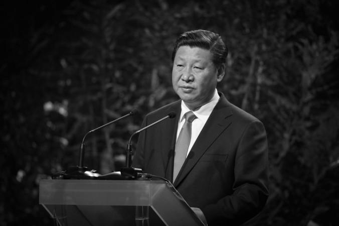 Китайский президент Си Цзиньпин выступает с речью во время визита в Окленд, Новая Зеландия, 21 ноября 2014 г. Фото: Greg Bowker/Getty Images.