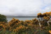 Шотландия, остров, продажа, викинги, необитаемый