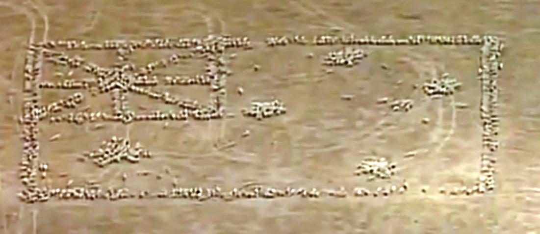 Патриотизм по-австралийски: флаг из 1030 овец. Скриншот видео