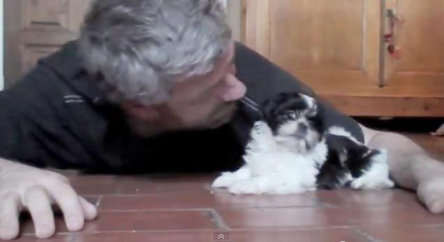 Скриншот видео: Philippe LISSART