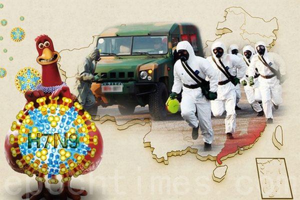 В Китае распространяется птичий грипп