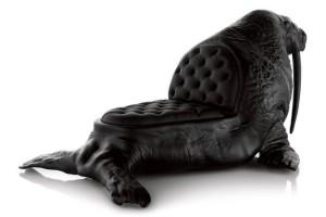walrus02