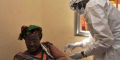 Учёные: Вероятность вылечиться от Эболы определяют гены