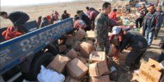 Местные жители в Китае растащили конфискат, предназначенный для уничтожения