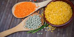 Палеолитическая и палео-вегетарианская диета ― возвращение к истокам
