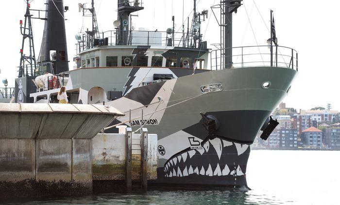 Один из кораблей организации Sea Shepherd. Фото: WILLIAM WEST/AFP/Getty Images