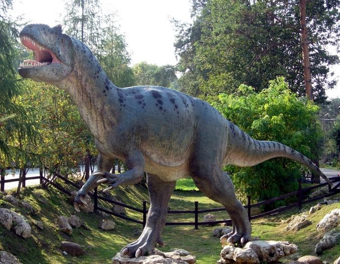 Аллозавр. Фото: Jakub Hałun/wikipedia.org/CC BY-SA 3.0