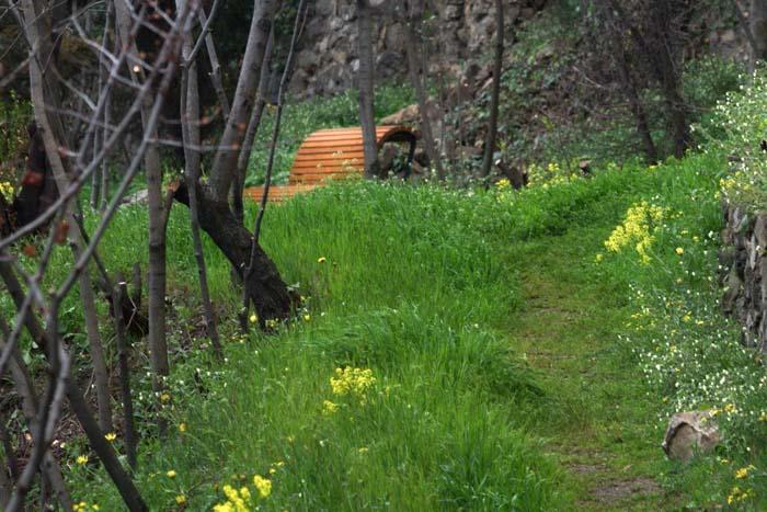 Тбилисский ботанический сад весной