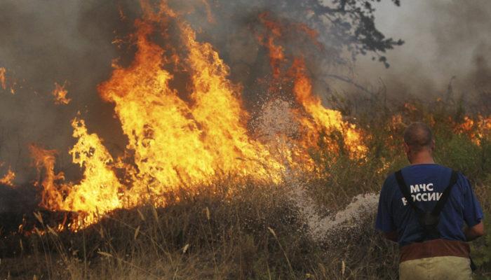 Площадь пожаров в Иркутской области за сутки увеличилась на 60%: горит 36000 гектаров леса