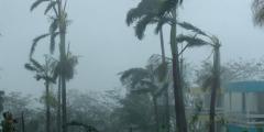 Более полутора миллиона японцев эвакуированы из-за тайфуна Халонг