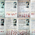 Часть собранных подписей в защиту последователя Фалуньгун. Фото: minghui.org