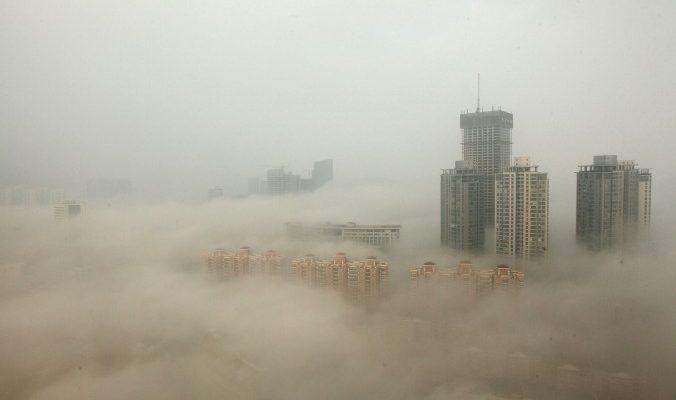 Гибель лесов из-за смога в Китае может повлиять на другие страны
