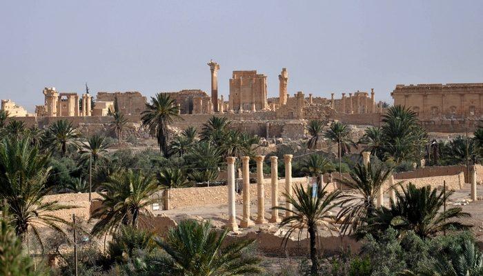 Пальмира: жемчужина пустыни (видео)