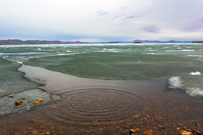 Озеро Байкал превращается в болото