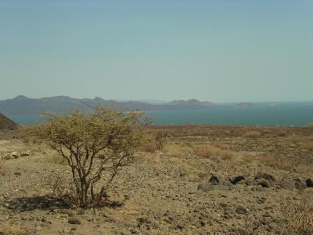 Озеро Туркана, Кения, где были найдены инструменты. Фото: Wikipedia Commons