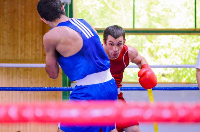 Федерация бокса России: предназначение
