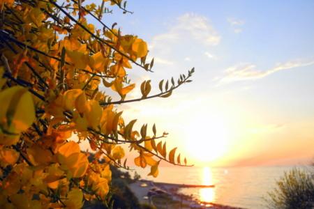 Пляжи Севастополя (10)