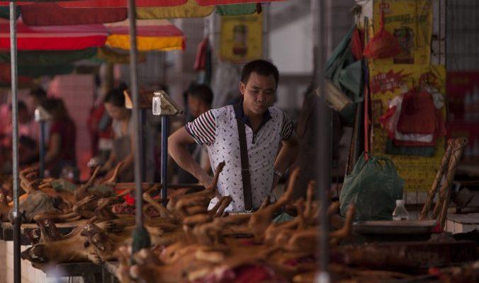 Фестиваль собачьего мяса в Китае возмутил активистов и обычных граждан