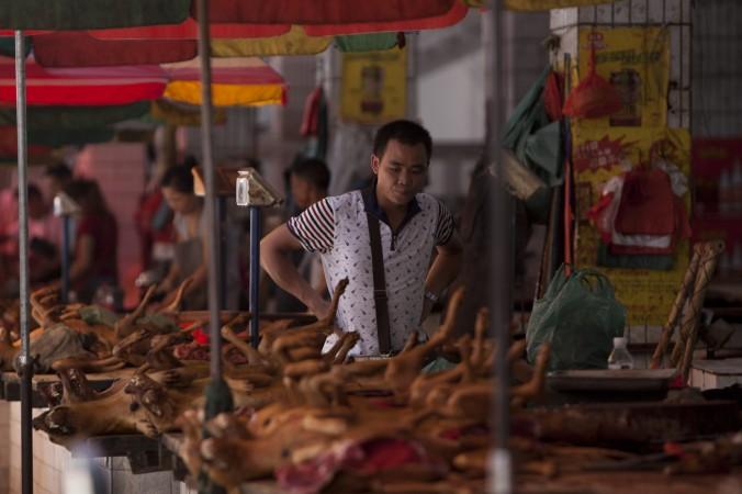 Мужчина рассматривает туши собак на рынке в городе Юйлинь провинции Гуанси 17 июня 2015 года. Фото: STR/AFP/Getty Images
