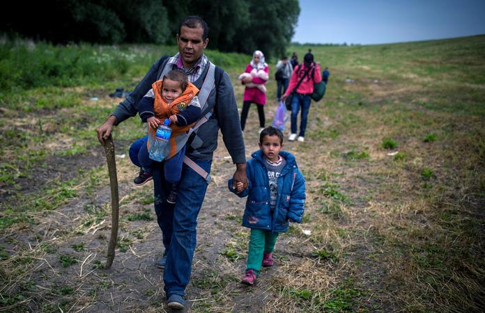Сербия, мигранты, Венгрия, Шенгенская зона, гуманитарная катастрофа