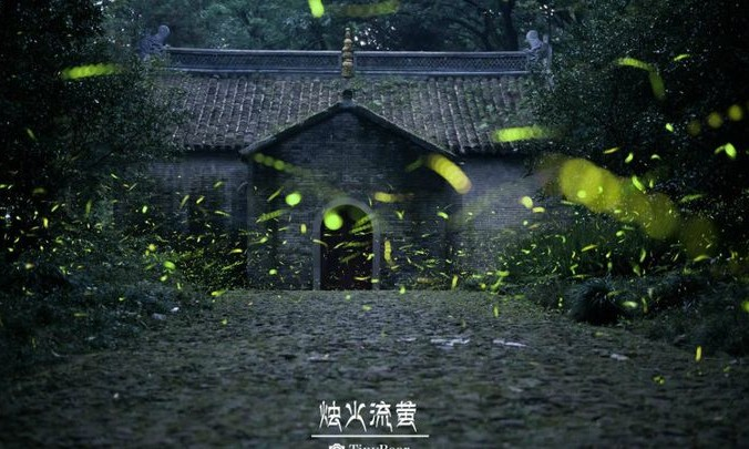 Светлячки у храма. Фото: Weibo.com