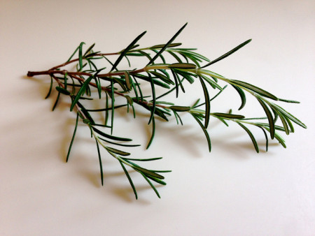 Rosemary-by-Health-Gauge-via-Flickr