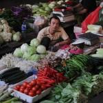 Пищевые продукты, произведённые в Китае, часто содержат опасные пестициды, удобрения и другие химикаты. Фото: MARK RALSTON/AFP/Getty Images