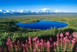 Аляска, Мак-Кинли, США, Денали, Барак Обама