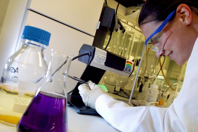 Наука, онкология, рак, учёные, морская губка
