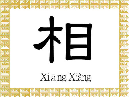 Китайский иероглиф 相 (хiàng — сян) означает «внешний облик, внешность», а произнесённый первым тоном хiāng означает «взаимный» или «друг друга». Иллюстрация: The Epoch Times