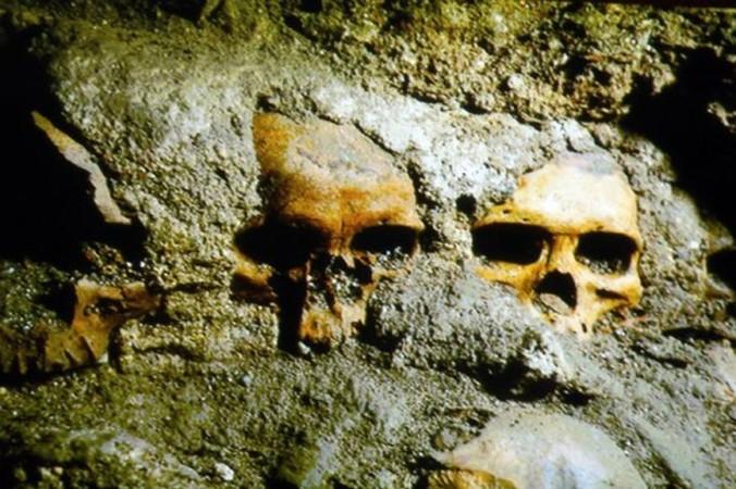 Недавно обнаруженная стена черепов в комплексе Templo Mayor в Мексике. Фото: Jesús Villaseca/Jornada.Unam.Mx