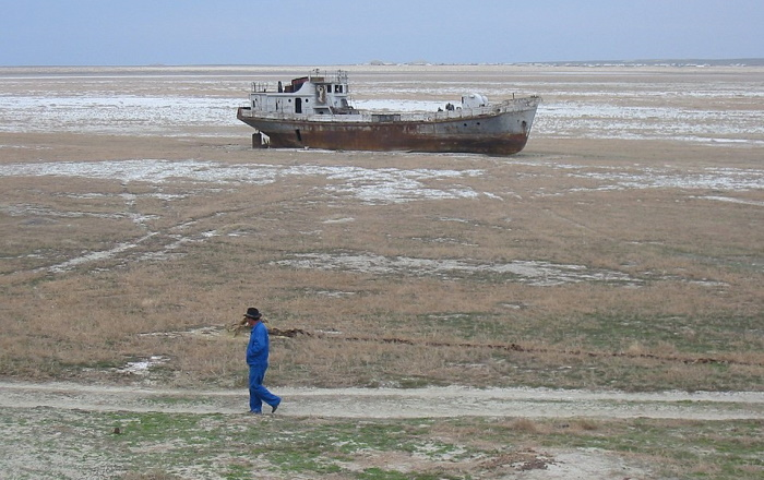 На месте высохшего Аральского моря посадят лес