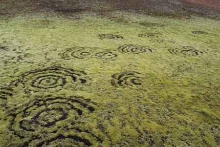 Fairy_ring_on_Iceland-580x388